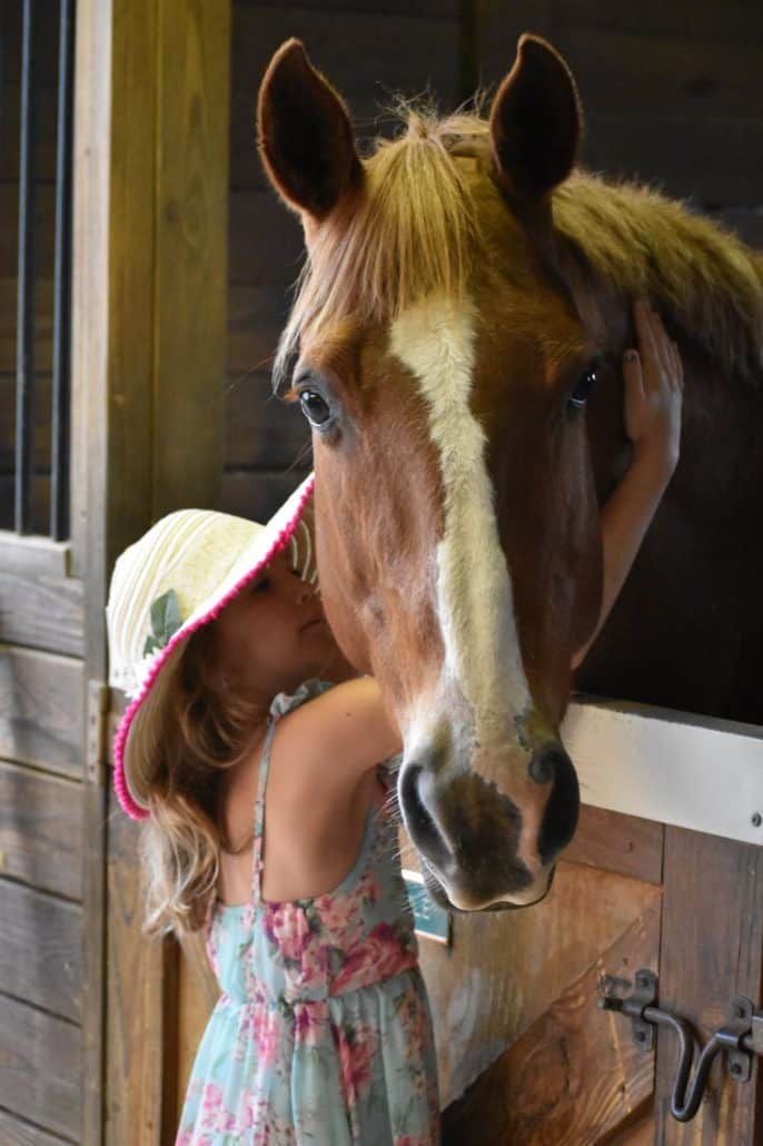 Storybook Farm, nonprofit for children, horseback therapy for children